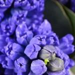 Букет «Синее море»
