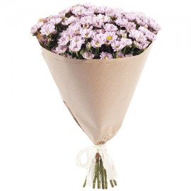 15 розовых мини-хризантем