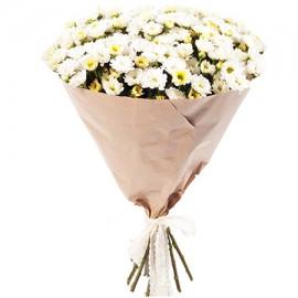25 белых мини-хризантем