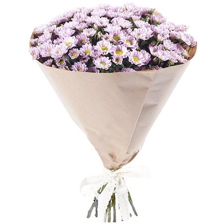 25 розовых мини-хризантем