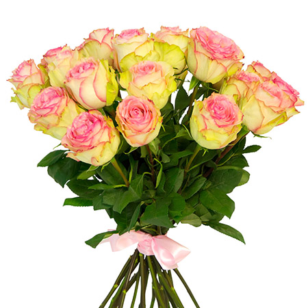 25 розовых роз «Сперансе»