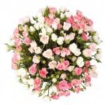 35 кустовых роз
