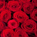 Композиция «Сердце из 25 красных роз»