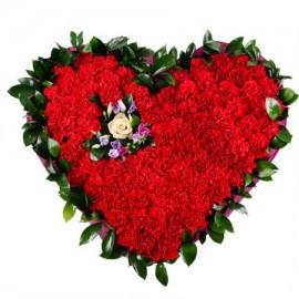 Сердце «Красное поле»